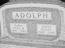 Anna M Adolph