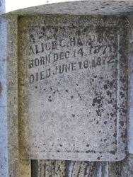 Alice C. Harding