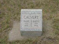Harry E. Calvert
