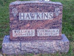 William Lewis Hawkins