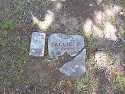 Callie D. Bender