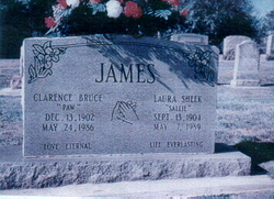 Laura Sallie <i>Sheek</i> James