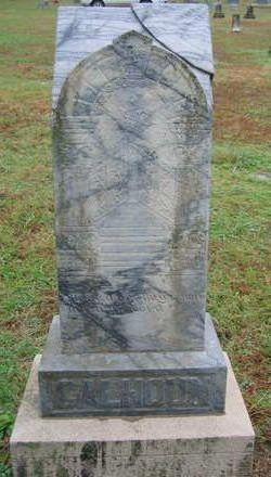 Daniel E. Calhoun