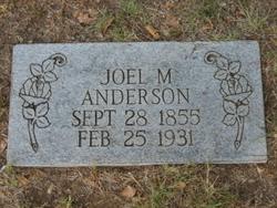 Joel McCutcheon Anderson