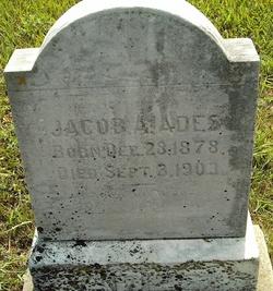 Jacob A Ades