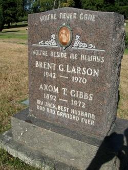 Brent G Larson