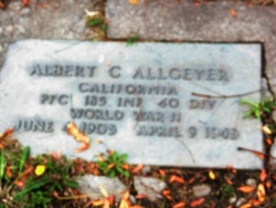 Albert Carl Allgeyer