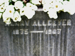 Henry Allgeyer