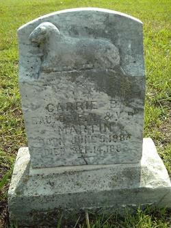 Carrie B Martin