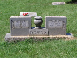 Mary J Downs