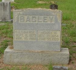Henry Washington Bagley