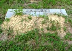 George E. Bagley