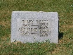Wiley J. Weeks