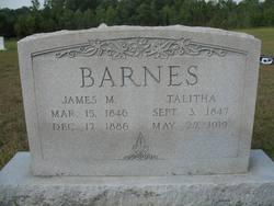 James M Barnes