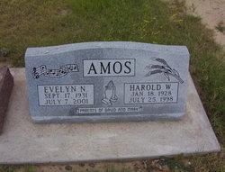 Evelyn N. Amos