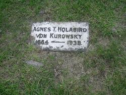 Agnes T <i>Holabird</i> von Kurowsky