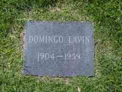 Domingo Lavin