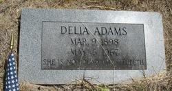 Delia Mae <i>Warrick</i> Adams