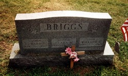 Clara Margaret <i>Junkins</i> Briggs