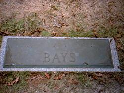Guy V Bays