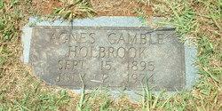 Agnes Gamble Holbrook