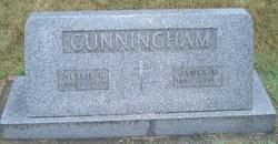 Nellie G. Cunningham