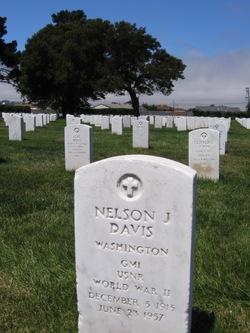 Nelson J Davis