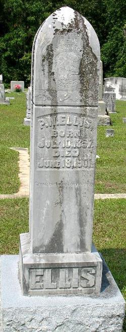 P. W. Ellis