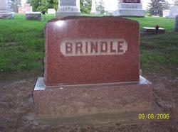 Arminda <i>Friend</i> Brindle