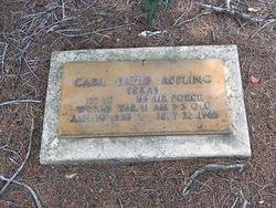 Carl David Appling