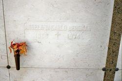 Angela DiCarlo Bergman