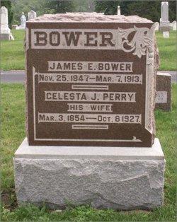 Celesta J. <i>Perry</i> Bower