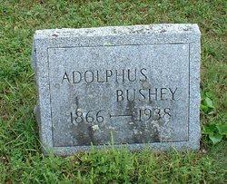 Adolphus Bushey