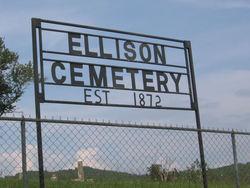 Elizabeth <i>Ellison</i> Hollingsworth