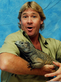 Steve Crocodile Hunter Irwin