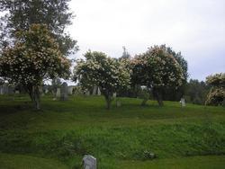 Cuyler Cemetery