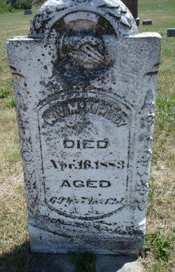 William V McKinley