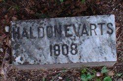 Haldon Evarts