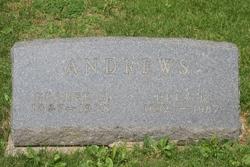 George G. Andrews