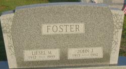 Liesel M. Foster