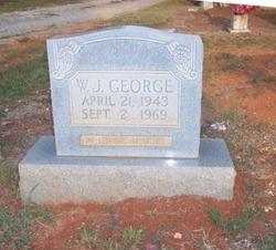 W.J. George