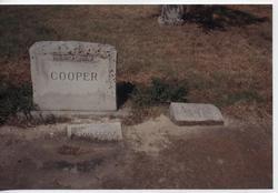 Andrew Lewis Cooper