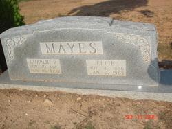 Charlie Robert Mayes