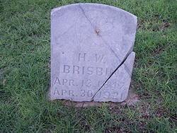 Henry William Brisbin