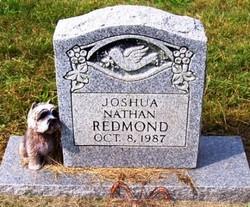 Joshua Nathan Redmond