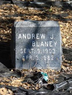 Andrew J Blaney