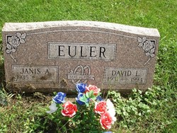 David L Euler