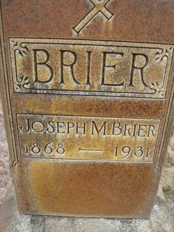 Joseph M Brier