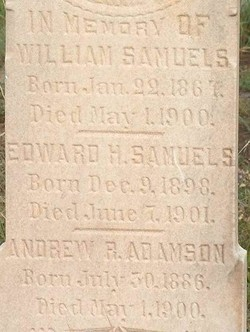 Andrew R Adamson