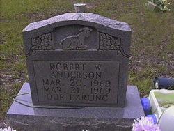 Robert W. Anderson